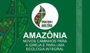 Um primeiro olhar a partir do laicato sobre o Sínodo da Amazônia